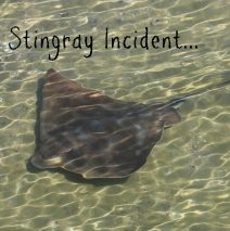 The Stingray Incident